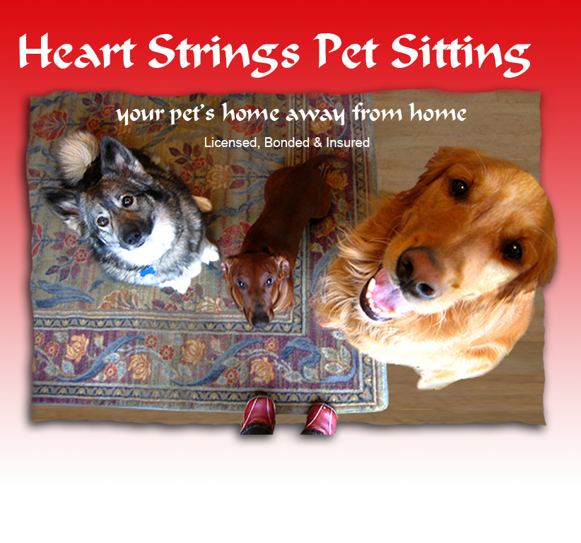 Heart Strings Pet Sitting, Your Pet's Home Away From Home